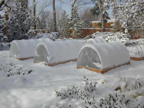 Winter Raised Beds